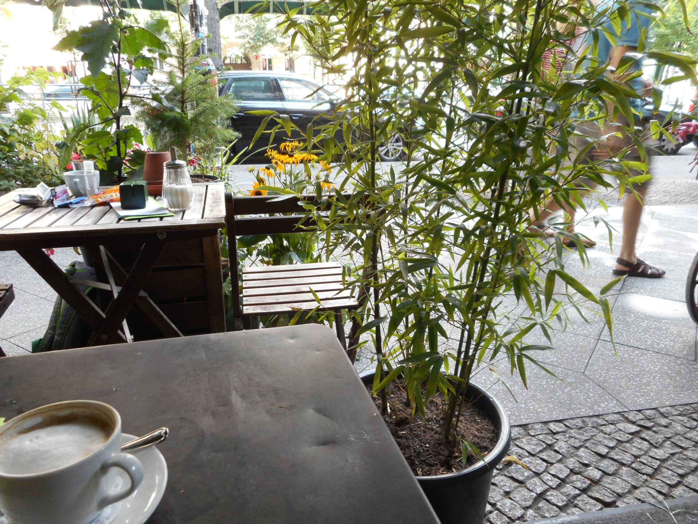 blumencafe2